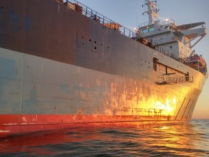 What Will Be the Role of Biofuels in Shipping's Decarbonization?