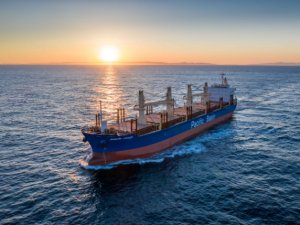 Pacific Basin Puts the Breaks on Fleet Growth Plans