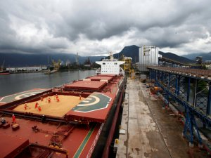 Workers Start to Fall Ill at Brazil's Busiest Port