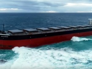 Bulk Carrier Aground in Environmentally Sensitive Area off Mauritius