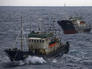 Activist Group Analyzes Chinese Fishing off Galapagos