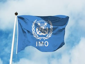 Up to 30 nations threaten to walk away from IMO's emissions meet-up