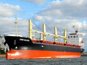 Japanese bulk carrier seized by migrants in UK UPDATE perpetrators arrested