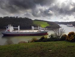 Idle Containership Fleet Shrinks