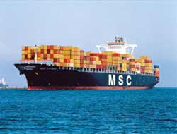 The Best Ocean Carrier: MSC