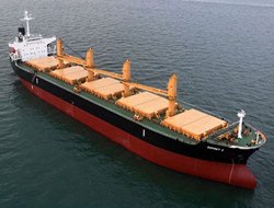 Ailing dry bulk market patiently