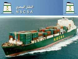 NSCSA unit wins $250m financing
