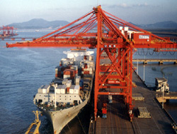 Shanghai port expects 10% growth