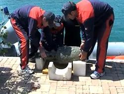 Nearly intact Roman ship found