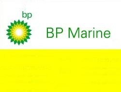 BP Marine fuels gets new COO
