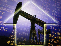 OPEC crude price new record high