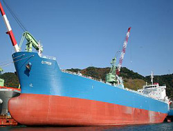 300th ship delivered by Hyundai