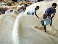 In exports, Basmati drops, buffalo meat gains