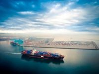 Port of LA Container Volumes Take a Hit