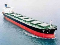 Diana Shipping Inc. reported a net loss of ...