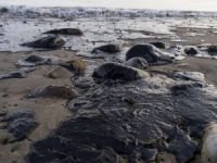 Legal Action Started over California Spill