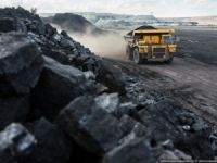 NEPA Projects launches Indonesian coal shipping venture