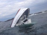 Five drowned after Canada whale-watching boat sinks