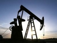 Freezing output unlikely to affect oil prices