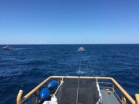 Man Fails at Second Attempt to Walk to Bermuda in Bubble