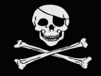 Nature of Piracy Is Changing