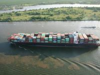 ZIM Shipping Says 'We Can Hope' as Losses Mount