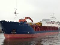Freighter Lill breached in collision in Denmark