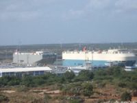 Striking Sri Lankan dockworkers fired upon