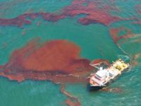 Heavy Fuel Oil Spill Reaches Australia's Sydney Harbour