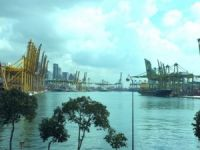 'Container consolidation giving rise to uncertainties as well as opportunities': PSA