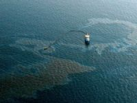 Fuel Oil Spills at Izmit Bay, Traffic Halted