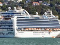 Gas cylinder explosion killed one crew on cruise liner Emerald Princess