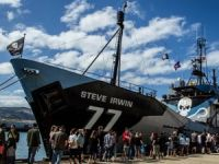 1st Ship Returns from Sea Shepherd's Whale Defense Campaign
