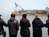 Bones Found Near Salvaged Sewol Ferry Not Human, Ministry Says