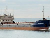 Seven Missing after Ship Sinks in Black Sea