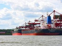 Throughput Rises at Port of Hamburg as Bulk Cargo Shines