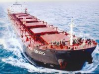 Diana Shipping Finds Work for Bulker Pair