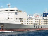Wellard Inks Deal to Sell Livestock Carrier