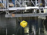 U.S. Funds Four Wave Energy Technology Projects