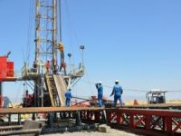 Canada's Valeura ready for 2nd drilling in Thrace: CEO