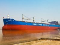 Shandong Shipping president resigns after less than six months