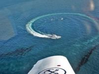Large Oil Spill Washes Ashore in Greece After Tanker Sinks