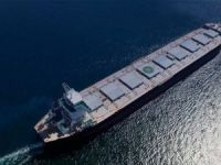 Foremost Group adds capesize pair at Waigaoqiao