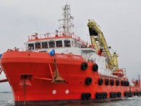 New head of offshore marine at Bumi Armada