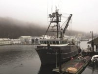 YANMAR Cruises Into Alaska with Power to Spare