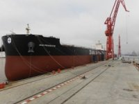 Diana Shipping Bags TC for m/v San Francisco with Koch
