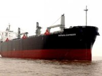 Nova Shipping adds to woodchip orderbook at Chengxi