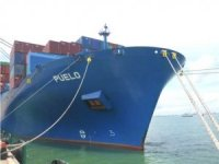 Diana Containerships Sells m/v Puelo