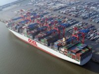 Investors Nervous as Doubts Raised Over COSCO Takeover of OOCL