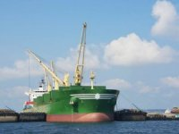 Lower Capesize Rates Halt Baltic Index Rally